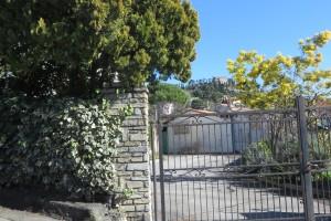 Bordighera (IM), mimosa e colline