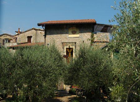 Ventimiglia (IM), Case Boi