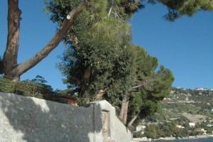Ventimiglia (IM),  zona di ponente