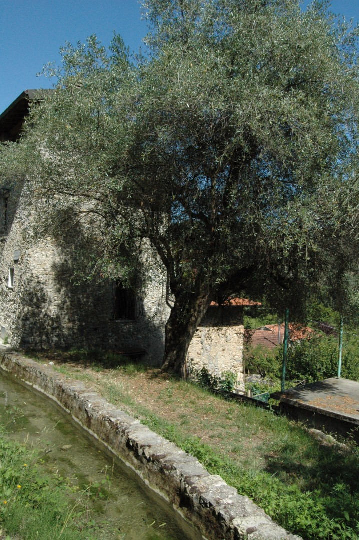 In Val Bevera, Via Ponte Roncone