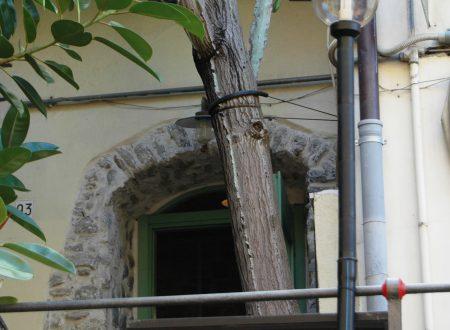 Bordighera (IM) – Via Bastioni