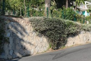 Bordighera (IM) – Via Virgilio